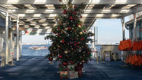 船乗り場のツリー