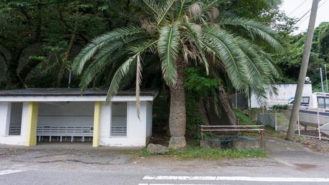 長井崎中学校バス停